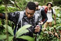 Trekking degli amici insieme nella foresta immagini stock