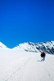 Trekking dei turisti a Jungfrau, alpi svizzere della Svizzera Fotografie Stock Libere da Diritti