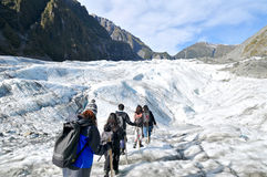 Trekking del ghiacciaio di Fox, Nuova Zelanda Fotografie Stock Libere da Diritti