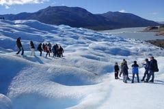 Trekking del ghiacciaio nella Patagonia Fotografia Stock