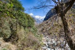 Trekking del Nepal in valle di Langtang Fotografia Stock Libera da Diritti