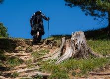 Trekking del viaggiatore al picco basso del picco bianco in montagna delle dolomia, Tirolo del sud, Italia Fotografie Stock Libere da Diritti