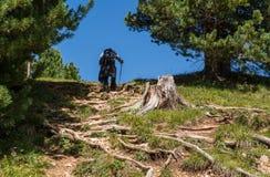 Trekking del viaggiatore al picco basso del picco bianco in montagna delle dolomia, Tirolo del sud, Italia Fotografia Stock Libera da Diritti