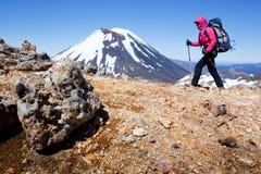 Trekking della montagna della Nuova Zelanda Immagini Stock