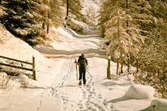 Trekking della ragazza con le racchette da neve nel legno Fotografie Stock Libere da Diritti