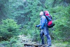 Trekking della viandante nelle montagne Sport e vita attiva Fotografie Stock