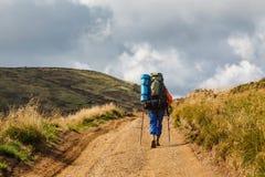 Trekking in den Bergen lizenzfreies stockbild