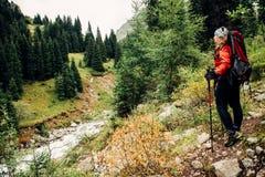 Trekking in den Bergen Das Mädchen auf dem Ufer von einem Gebirgsfluss stockbild