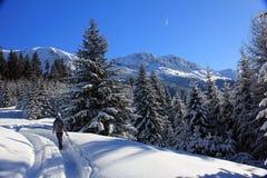 Trekking in den Bergen während der Winterzeit lizenzfreie stockfotografie