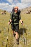 Trekking der jungen Frau im Berg lizenzfreies stockbild