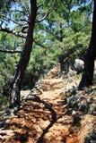 Trekking in der Türkei Lycian-Weisen-Gehen Kiefer Lizenzfreies Stockfoto