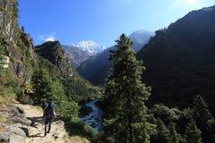 Trekking di viaggiatore con zaino e sacco a pelo sulle montagne dell'Himalaya Immagini Stock Libere da Diritti