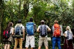 Trekking divers d'amis ensemble dans une forêt Images libres de droits