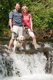 Trekking with dog Stock Image