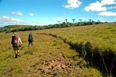 Trekking em Brasil do sul fotografia de stock