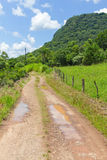 Trekking em Malakoff em Nova Petropolis - Rio Grande do Sul - Br Foto de Stock