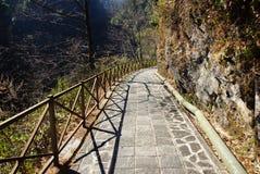 Trekking em montanhas de Cangshan, Dali, província de Yunnan, China Imagem de Stock