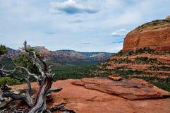 Trekking em Sedona, o Arizona, EUA Fotografia de Stock