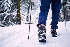 Trekking en hiver avec un sac à dos le long de la rivière dans le canyon Images stock