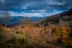 Free Trekking From Pontito To Penna Di Lucchio, Lucca - Tuscany Royalty Free Stock Photography - 165234387