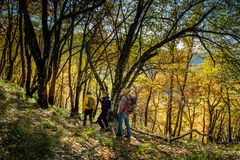 Free Trekking From Pontito To Penna Di Lucchio, Lucca - Tuscany Stock Photo - 165241030