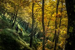 Free Trekking From Pontito To Penna Di Lucchio, Lucca - Tuscany Royalty Free Stock Photography - 165241137