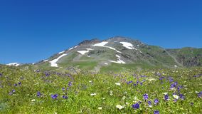 Trekking in Georgia immagini stock libere da diritti