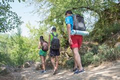 Trekking, group of hikers backpackers walking together outdoors in the forest royalty free stock image