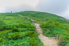 Trekking at Hakuba,Nakano,Japan Royalty Free Stock Photo