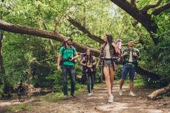 Trekking, het kamperen en wild het levensconcept Twee paren van vrienden lopen in het zonnige de lentehout, spreken en lachen, al stock foto's