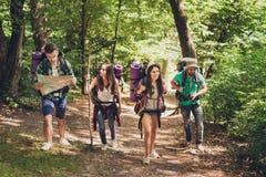 Trekking, het kamperen en wild het levensconcept Vier beste vrienden wandelen in het de lentehout, controleert de kerel de route  stock foto's