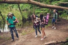 Trekking, het kamperen en wild het levensconcept Vier beste vrienden wandelen in het de lentehout, spreken de dames en lachen, al royalty-vrije stock afbeeldingen