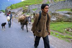 Trekking through hilly village. A porter and his donkey leads a trekker through hilly village way. A dog follows them Royalty Free Stock Photo
