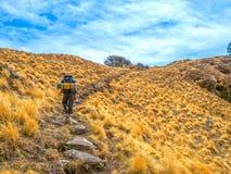 Trekking himalayano Fotografia Stock Libera da Diritti