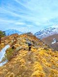 Trekking himalayano Immagine Stock