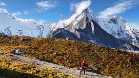 Trekking in Himalayas Royalty Free Stock Photos