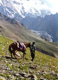 Trekking in Himalayers Royalty-vrije Stock Foto