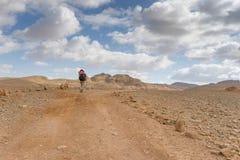 Trekking i Negev dramatisk stenöken, Israel Arkivfoton