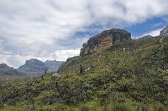Trekking i Rwenzorien Arkivfoton