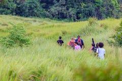 Trekking i Thailand Fotografering för Bildbyråer