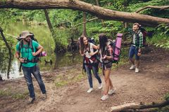 Trekking, Kampieren und wildes Lebenkonzept Vier beste Freunde wandern im Frühjahr Holz, Damen sind sprechend und lachend, alles  lizenzfreie stockbilder