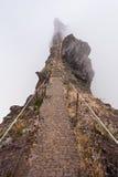 Trekking on Madeira island Stock Photography