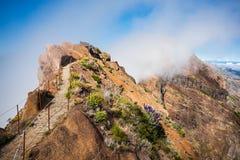 Trekking on Madeira island Stock Image