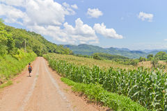 Trekking at Malakoff in Nova Petropolis - Rio Grande do Sul - Br Royalty Free Stock Photography