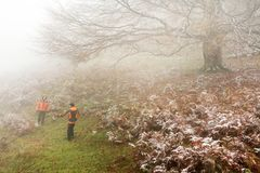 Trekking in Mehedinti Mountains in autumn royalty free stock photography