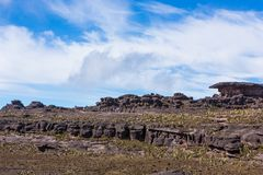 Trekking montering Roraima Royaltyfria Bilder