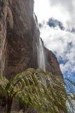 Trekking Mount Roraima Tepui. Mount Roraima in Venezuela, South America Stock Images
