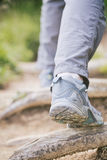 Trekking on Mountain Trail Stock Photography