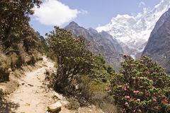 Trekking in the Mountains of Nepal Royalty Free Stock Photography