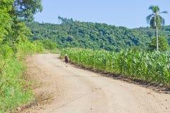 Trekking na estrada secundária em Nova Petropolis - Rio Grande do Sul Imagens de Stock Royalty Free